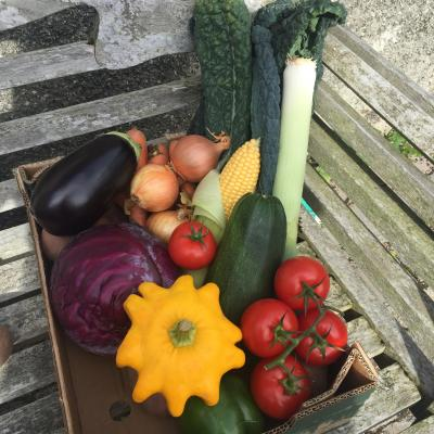 Picture of Large Veg Box (No Potatoes)